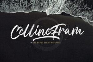 Celline Fram - Textured Brush Font