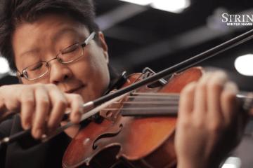 D'Addario Violin Octave Cello Strings Winter NAMM 2017
