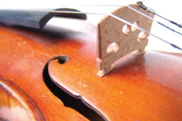 proper string height: Violin strings and bridge
