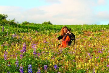 Cellist giving outdoor performance in a field of wildflowers