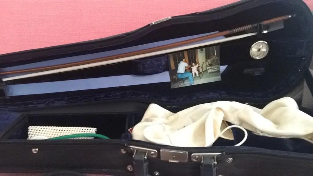 Francesca dePasquale violin case