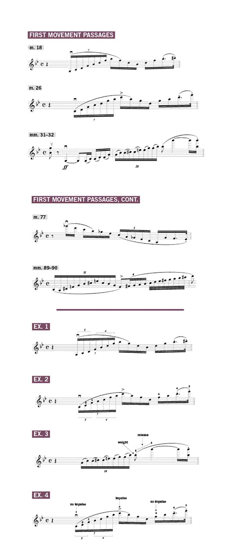 the First Movement of the Bruch Violin Concerto No. 1 in G Minor