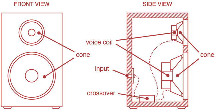 the anatomy of speakers from a front and side view