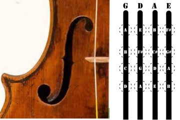 violin finger positions for first position