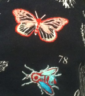 Fly and Butterfly on my botanical apron