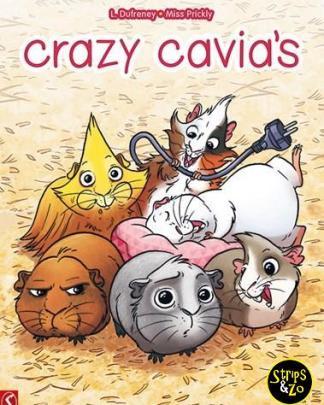 crazy cavias 1