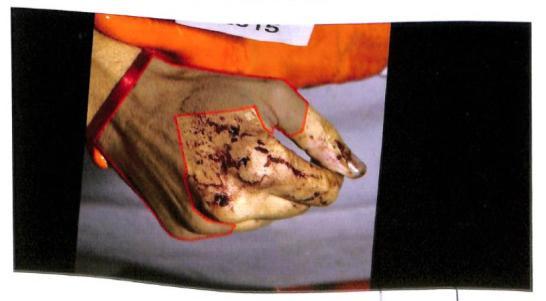 Alberto Nisman, Antonio Stiuso, Alberto Mazzino, Fernando Pocino, AFI , suicidio, Diego Lagomarsino, perito informático, AMIA, Alberto Nisman, Gendarmería, pericia, Cuerpo Médico Forense, Policía Federal Lanata, Héctor Gambini, Lucia Salinas, Maria Eugenia Duffart , Clarin, Lagomarsino, Stiuso, Cristina Fernandez de Kirchner, Iran, EEUU, Medios de Comunicación