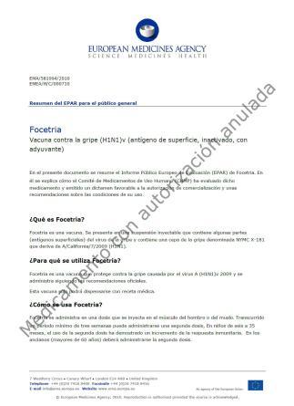 Sigman, Vizzotti, Sinergium Biotech, vacunas H1N1, gripe A