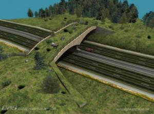 conception-of-a-living-bridge-300x222 (1)