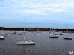 Multiple Boats Tied To Mooring Buoys