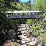 Sentinel Pine Covered Pedestrian Bridge