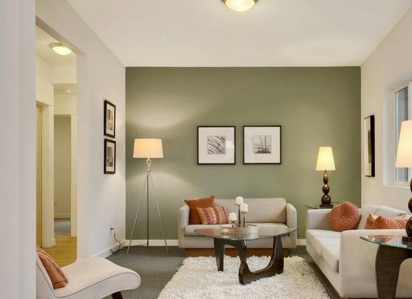 покраска стен в квартире в два цвета дизайн фото 5