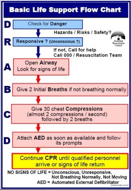 cpr-chart