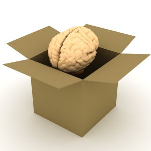 brain in the box