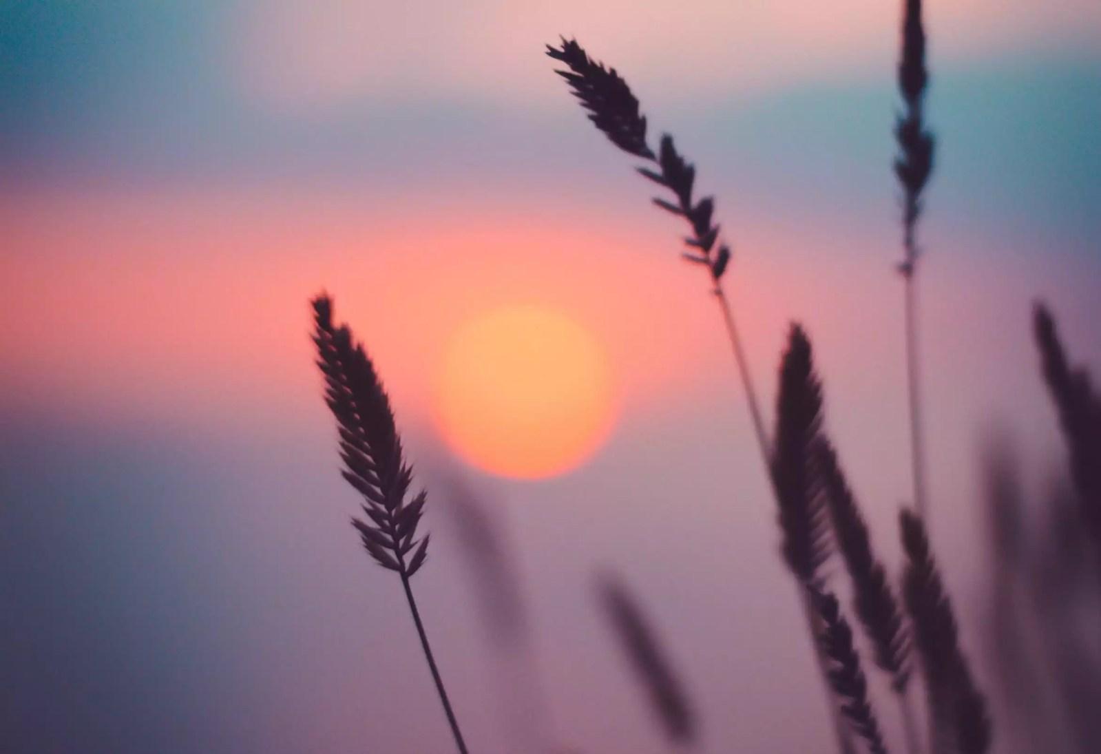 Capvespre estiu joaquim folguera poesia