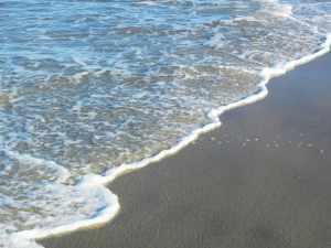 Folly Beach Has Now Banned Boozing on the Beach