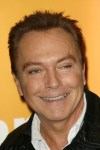David Cassidy Pleads Guilty to Felony DUI Charges