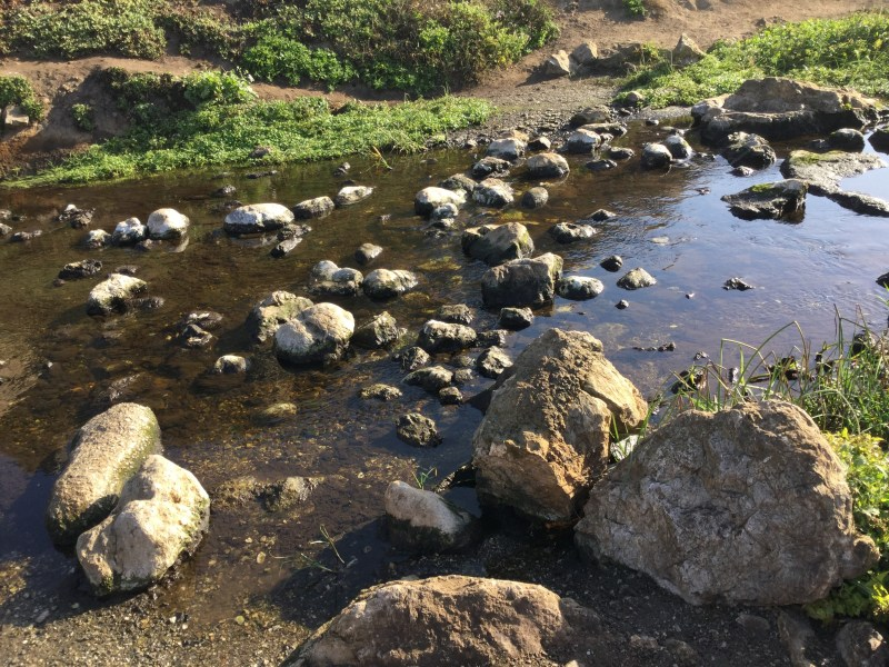 creek-rocks