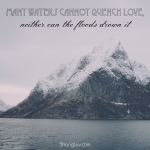 <p>Many waters cannot quench love! #marriage #commitment </p>
