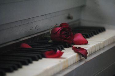 strong women quotes rose piano flower sad heartbreak