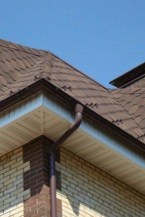 Sofits per il tetto del raccoglitore: le sottigliezze dei lavori di copertura