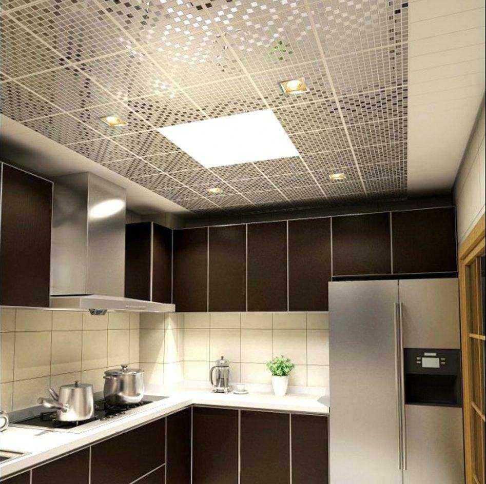 Faux Plafond Suspendu Cuisine choisir le meilleur plafond de la cuisine. qu'est-ce que le