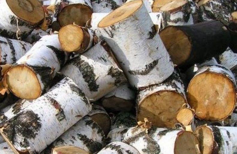 Близкие к идеалу по характеристикам березовые дрова. Недостаток - довольно быстро {amp}quot;стареют{amp}quot;
