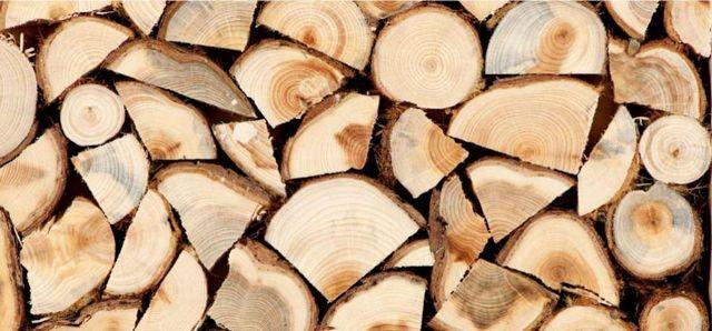 Дрова плодовых деревьев лучше оставить для приготовления пищи