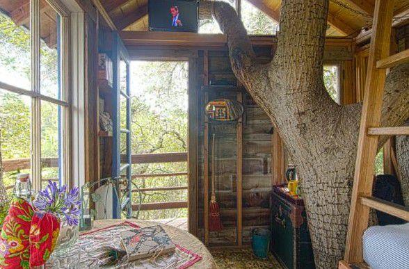 Nhà trên cây