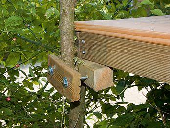 Fixation d'une maison sur les branches