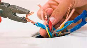 Сколько стоит точка электрики в грн