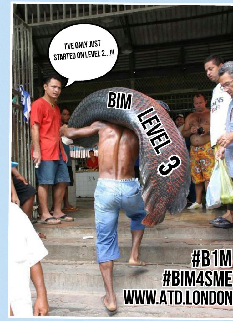 BIM_Lv3