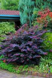 06 beautiful front yard landscaping ideas