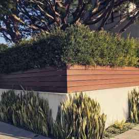 59 simple and cheap privacy fenceideas