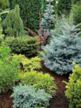 24 simple and beautiful front yard landscaping ideas