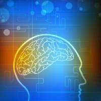 SOI-IPP Program and Concussion Care