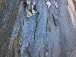 Folded blueschists in the Condrey Mountain Window, California