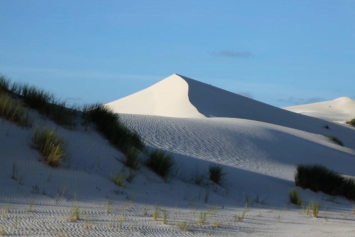 Struisbaaioceans Guest House Dunes