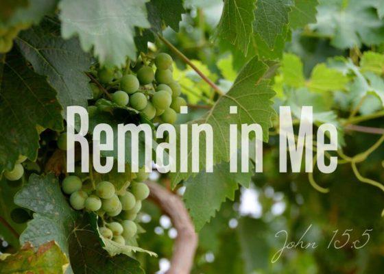 I am the Vine 2