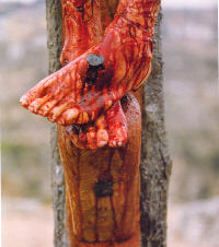 Daily Devotion Tuesday 20th July 2021 The Precious Blood of Jesus
