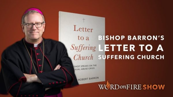 Bishop Barron's New Book Shows How to Defeat the 'Devil's Masterpiece'