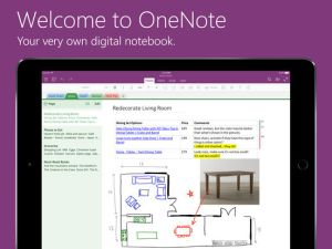 OneNote iPad screenshot