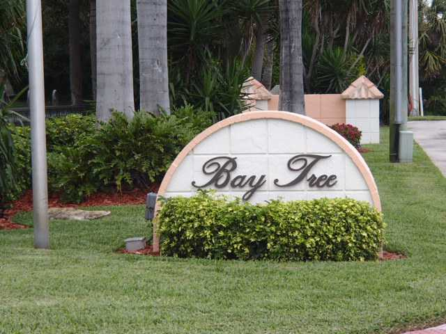 Bay Tree on Hutchinson Island