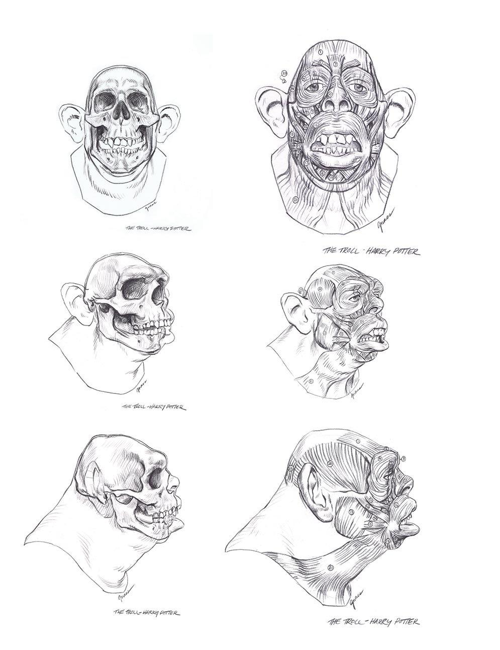 Art Instruction :: Head Shots: An Artist's Guide to Head