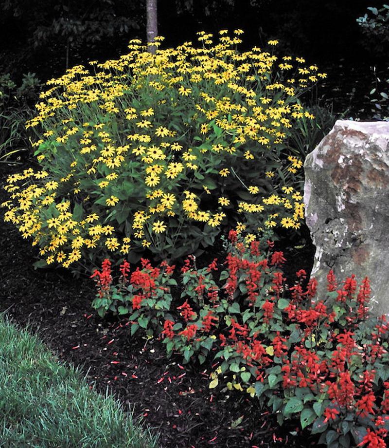 plantings-thumb
