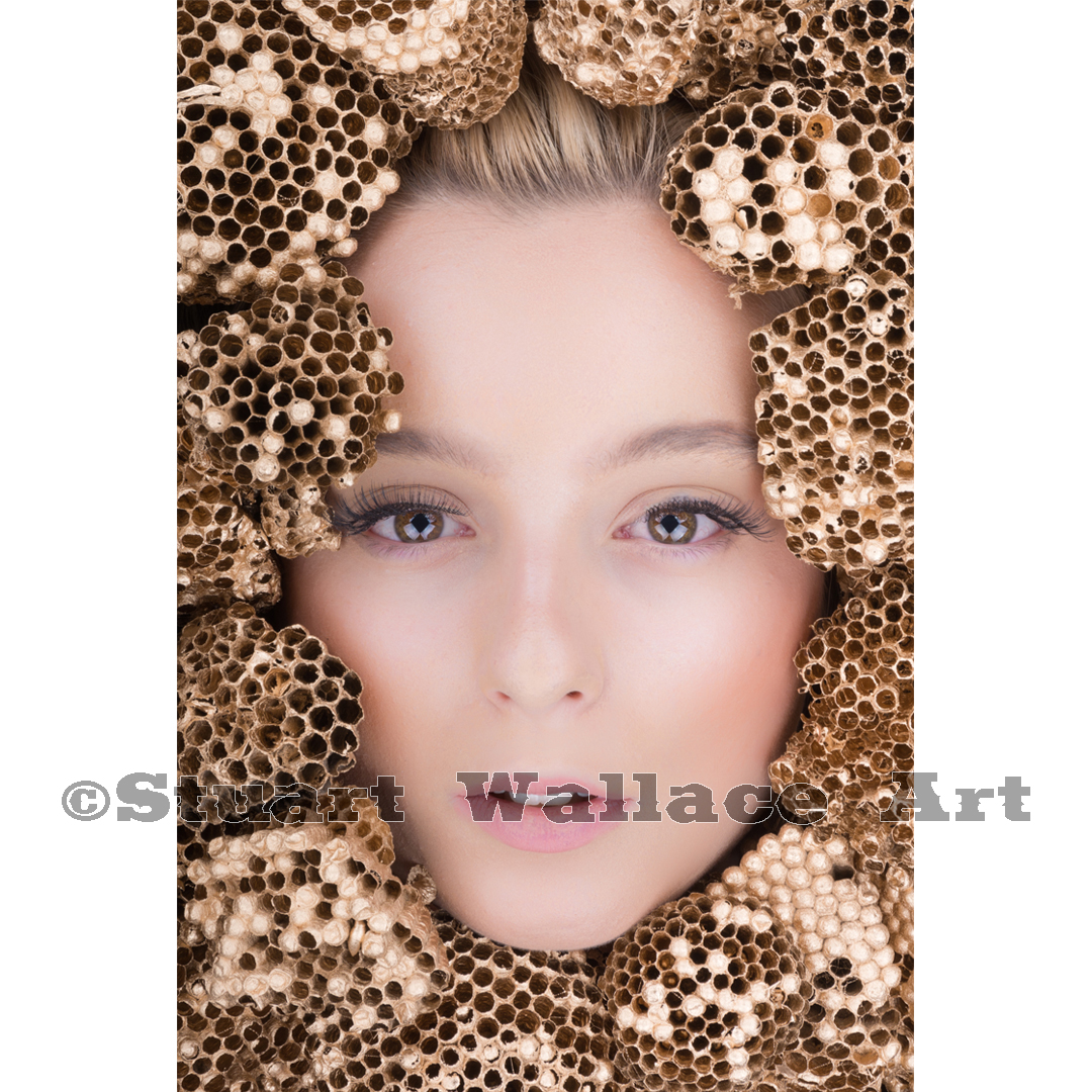 41 WM 888: Woman's Face Surrounded by Golden Wasp Nests