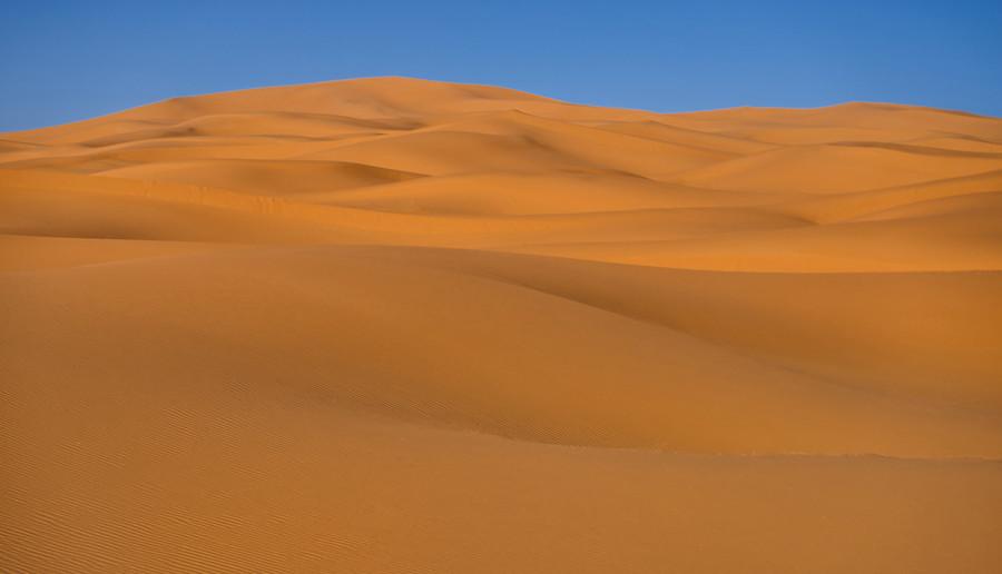 On Camel, Across the Sahara Desert