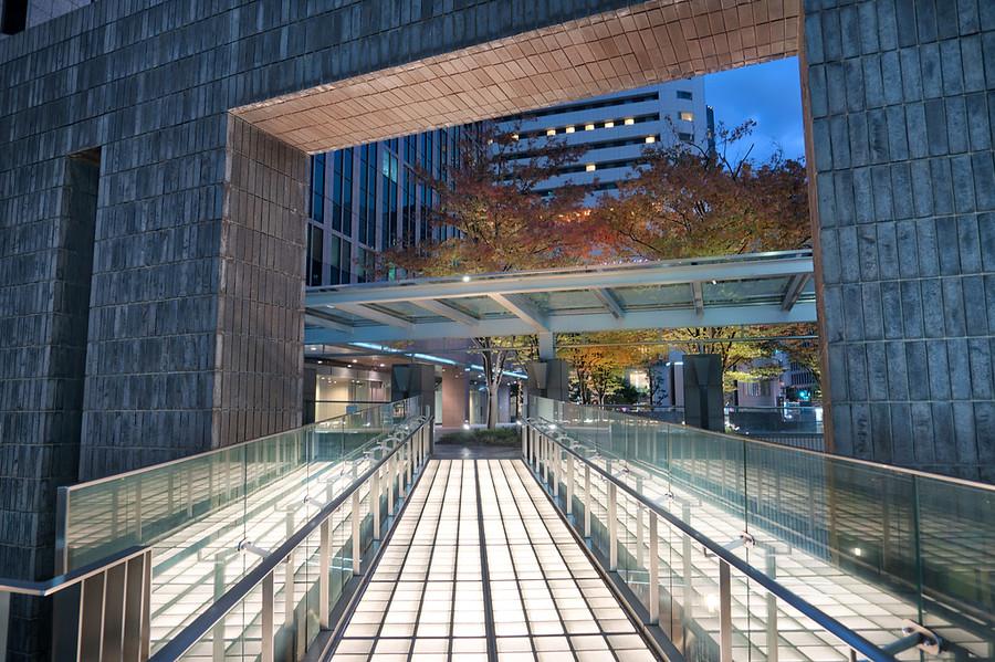 Walking Around Osaka