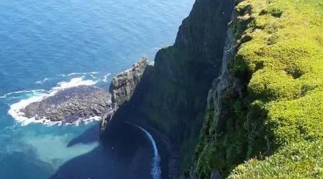The cliffs at Hornstrandir are simply massive.