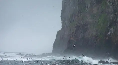 Massive cliffs and rough seas off the coast of the North West of Iceland.